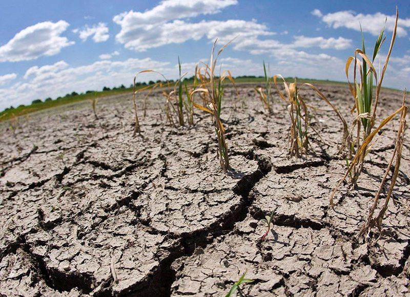 Tierra guatemalteca enfrenta sequía